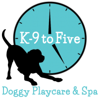 K 9 to five dog day care dog grooming dog self wash dog shop 17000 se 1st street vancouver wa 98684 solutioingenieria Choice Image
