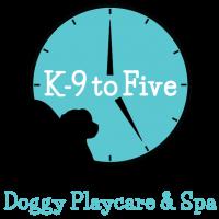 K 9 to five dog day care dog grooming dog self wash dog shop 17000 se 1st street vancouver wa 98684 360 882 5925 to schedule dog day care or dog grooming solutioingenieria Choice Image