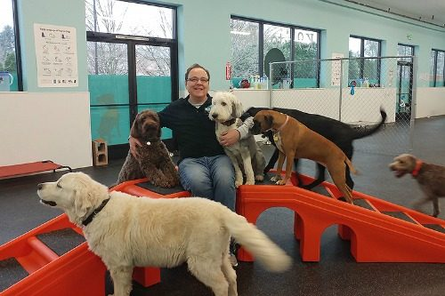 Dog Play Day Care Vancouver